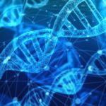 What is DNA Computing, DNA Computers & Its Techniques?